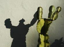 Un cactus che getta un'ombra su un muro di cemento Fotografia Stock