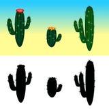Un cactus de la historieta del vector fijó con las flores y las siluetas del cactus Imagenes de archivo