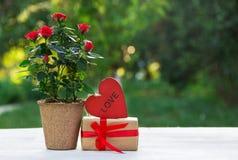Un cadeau romantique Une rose d'écarlate à un pot de fleurs, à un boîte-cadeau et à un coeur en bois rouge Copiez l'espace Photographie stock