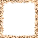 Un cadre carré fait à partir des graines de tournesol Photographie stock libre de droits