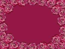 Un cadre des fleurs de claret photographie stock libre de droits