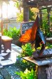 Un caffè dal tempio del lotto di Tanah in Bali, Indonesia Fotografia Stock Libera da Diritti