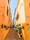 Un callejón estrecho adornado con las flores hermosas en Alghero Cerdeña, Italia Fotografía de archivo libre de regalías