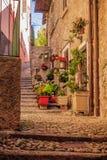 Un callejón y pasos y una puerta principal Imagenes de archivo