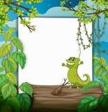 Un caméléon dacing et un conseil blanc Image stock