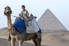 Un camello y un jinete delante de la pirámide de Khufu en Giza en El Cairo, Egipto Foto de archivo