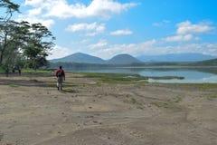 Un caminante a lo largo de las orillas del lago Elementaita, Kenia sleeping fotos de archivo libres de regalías