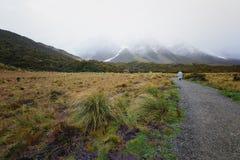 Un caminante que disfruta de una tarde que llueve en parque nacional Imágenes de archivo libres de regalías