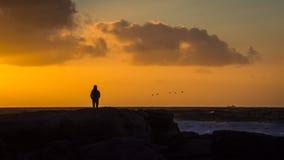Un caminante solitario mira una multitud de los pájaros que vuelan delante del sol poniente imagen de archivo libre de regalías