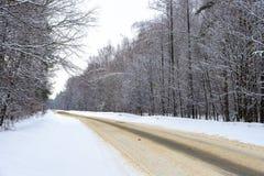 Un camino abandonado del invierno en el bosque Fotografía de archivo