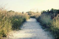 Acceso de la playa Foto de archivo libre de regalías