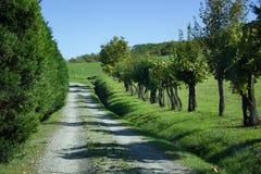 Un camino blanco en país toscano Imagen de archivo libre de regalías