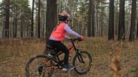 Un camino caucásico de la bici de los paseos de los niños en parque del otoño El ciclo anaranjado negro del montar a caballo de l almacen de video