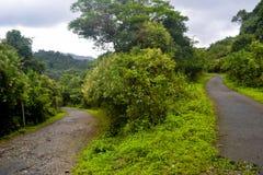 Un camino de la alta gama en Kerala Fotografía de archivo