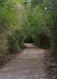 Un camino de la arena Foto de archivo