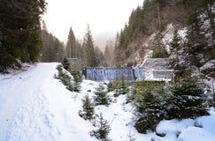 Un camino de la montaña el la estación del invierno con una pequeña cascada con muchos abetos Imágenes de archivo libres de regalías