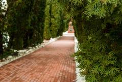 Un camino de la piedra del adoquín alineado con nieve Imagen de archivo