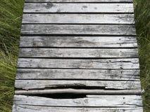 Un camino de madera en un prado Foto de archivo