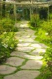 Un camino de piedra en jardín de flores Imágenes de archivo libres de regalías
