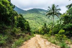 Un camino de tierra abajo entre la selva y las palmeras en una isla tropical fotos de archivo
