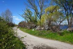 Un camino de tierra ancho a la orilla del río en el bosque o el parque de la primavera Fotografía de archivo libre de regalías
