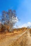 Un camino de tierra en prado Imagenes de archivo