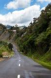 Un camino del carril en Nueva Zelanda Fotos de archivo libres de regalías