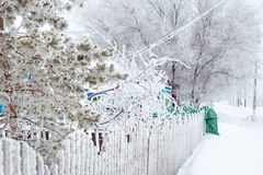 Un camino del invierno en la región de Orenburg Imágenes de archivo libres de regalías