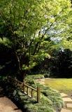 Un camino del zen Imagen de archivo