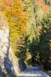 Un camino en montaña en tiempo de caída Fotografía de archivo libre de regalías