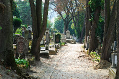 Un camino en un cementerio rumano fotos de archivo