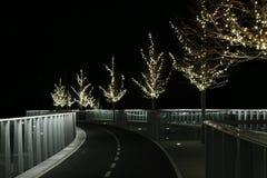 Un camino encendido con llevar en infinito fotografía de archivo