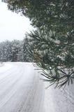 Un camino forestal en invierno, un bosque conífero Fotografía de archivo