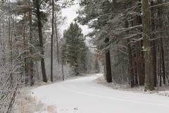 Un camino norteño nevoso de Wisconsin Imagen de archivo libre de regalías