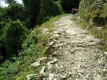 ¡Un camino por completo de la aventura! Imagen de archivo libre de regalías