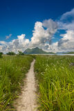 Un camino que dirige a una isla montañosa Foto de archivo