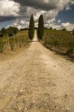 Un camino rural en Toscana, Italia Imagen de archivo libre de regalías