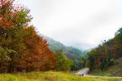 Un camino rural en Virginia Imágenes de archivo libres de regalías
