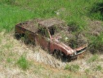Un camion abandonné couvert par croissance de plantes sauvages Image stock