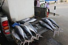 Un camion arrive avec le poisson frais au marché de Mutrah images stock