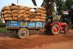Un camion in pieno dei raccolti Immagini Stock