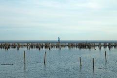 Un camminatore su un ponte di legno vicino alla diga di bambù fotografia stock libera da diritti