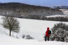 Un camminatore su un pendio di collina innevato Fotografia Stock