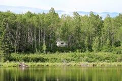 Un campeur caché dans les arbres près de l'eau photos libres de droits