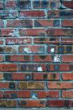 un campione della superficie della muratura Fotografia Stock Libera da Diritti