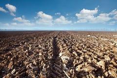 Un campo arato e nubi Fotografie Stock