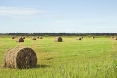 Un campo con le balle della paglia dopo il raccolto Fotografie Stock