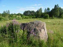 Un campo con una pietra Immagini Stock Libere da Diritti