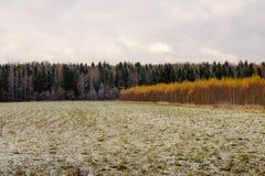 Un campo cubierto con nieve Imagenes de archivo