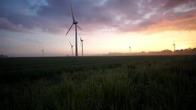 Un campo de cereal joven y turbinas de viento almacen de metraje de vídeo